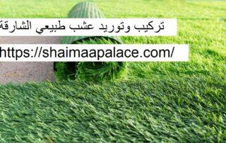 تركيب وتوريد عشب طبيعي الشارقة